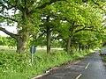 Kiln Lane, Bethersden - geograph.org.uk - 174504.jpg