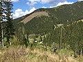 King valley - panoramio.jpg