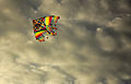 Kite in the sky.JPG