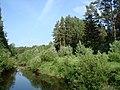 Klinsky District, Moscow Oblast, Russia - panoramio.jpg