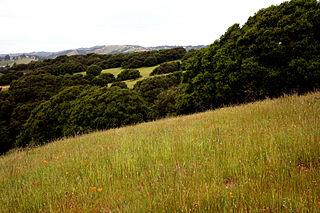 Joseph Knowland State Arboretum and Park