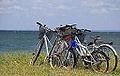 Korsør cykler på strand.jpg