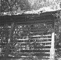 """Kozolec """"aufkar"""", krit z drevesno skorjo, Male Lipljene 1964.jpg"""
