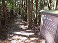 Kumano Kodo Kogumotorigoe World heritage31.JPG