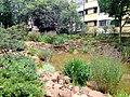 Kunming Botanical Garden - DSC02874.JPG