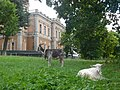 Kyianytsia - Palace main building with goats.jpg