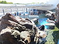Kyoto Aquarium in 2013-5-2 No,35.JPG