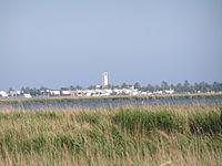 L'Encanyissada i el Poble Nou del Delta.jpg