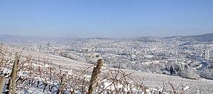 Deutsch: Lörrach: Winterpanorama vom Tüllinger...