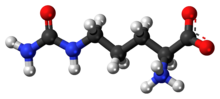 Ball-and-stick model of the zwitterion