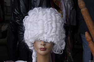 La perouse perruque 2012.JPG