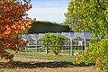 La serre des bonsaïs de l'Arboretum de la Vallée-aux-Loups (Chatenay-Malabry) (31142294788).jpg