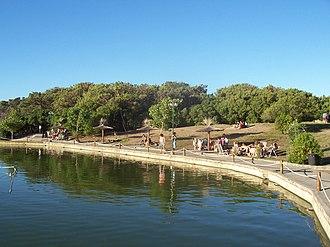 Necochea - Swan Lake in Miguel Lillo Park