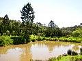 Lagoa, Kinkaku-Ji - panoramio.jpg
