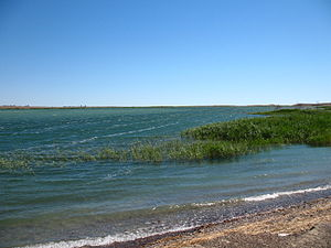Lake Balkhash May 2007 2.JPG