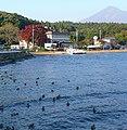 Lake Inawashiro 豬苗代湖 - panoramio.jpg