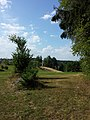 Landschaft bei Altmelon sl1.jpg