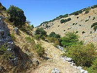 Landschaft in andalusien04.jpg