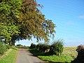 Lane near Longnewton - geograph.org.uk - 647854.jpg