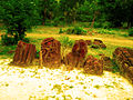 Laterite stone statues at Dhalohara worshipped locally as Bhairavi Mata.jpg