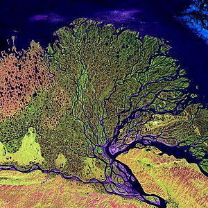 Lena River - Lena river Delta by Landsat, February 2000