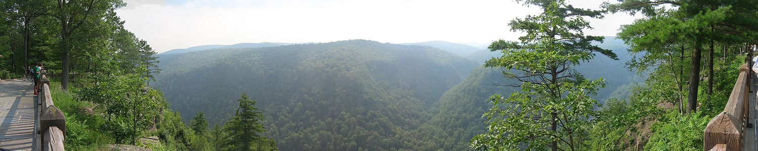 A panoramic view of a wooded gorge, on the left and right is a wooden fence with several visitors standing at an overlook, also on the left is a paved platform, the gorge is covered with green trees