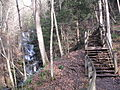 Leonard Harrison State Park Turkey Path 5.jpg