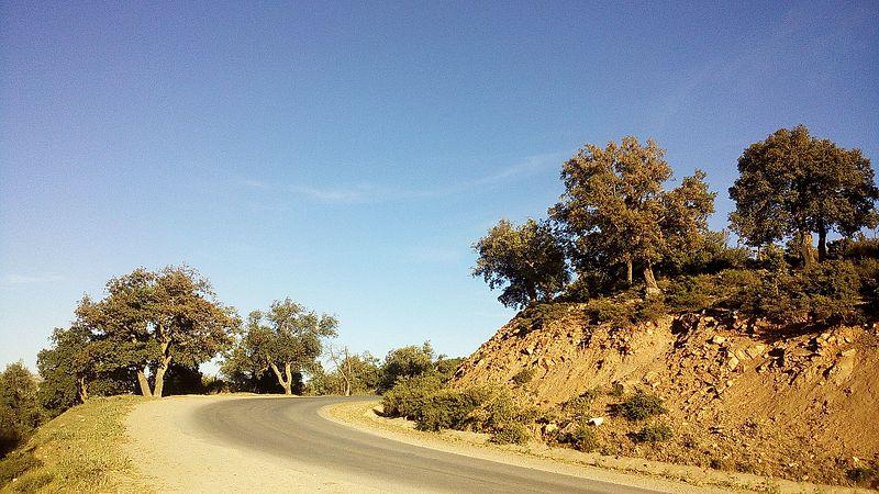 File:Les routes du nord-est d'Algérie.jpg