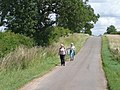 Litter collection on roadside verge - geograph.org.uk - 1428899.jpg