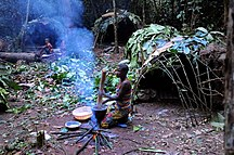 Central African Republic-Human rights-Living on the rainforest