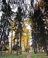 Lobnya, Moscow Oblast, Russia - panoramio (464).jpg