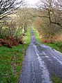 Long Straight Road - geograph.org.uk - 289431.jpg