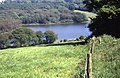 Looking down to Ardingly Reservoir - geograph.org.uk - 1320505.jpg