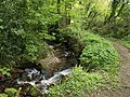 Lud Brook - geograph.org.uk - 1273129.jpg