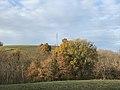 Lumière d'automne sur les coteaux de Pamiers.jpg