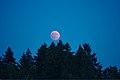 Lunar Eclipse 2018 SG 014 (29823675228).jpg