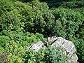 Mörikefels - panoramio (1).jpg