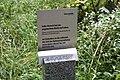 MRK Artikel 10 Skulptur CF9A0716.jpg