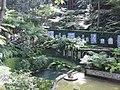 Madeira - Monte - Jardim Tropico (2093404440).jpg