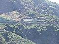 Madeira - Ribiera Brava (4733082724).jpg