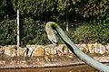 Manacor - Ma-15 - Oliv-art park 10 ies.jpg
