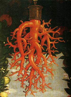 Madonna della Vittoria - Detail of the coral