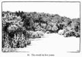 Manual of Gardening fig041.png