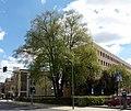 Marburg ND Sommerlinde Universitätsstraße 48 von W 2017-04-29.jpg