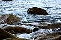 Marea (24102015).jpeg
