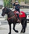 Marine Buddies, Vet Parade 11-14 (16103507182).jpg