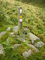 Marker Post on St Cuthbert's and Pennine Ways - geograph.org.uk - 570721.jpg