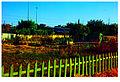 Market garden I.jpg