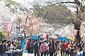 Maruyama Park (3515270775).jpg