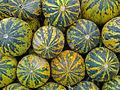Melons - Fethiye Market.jpg